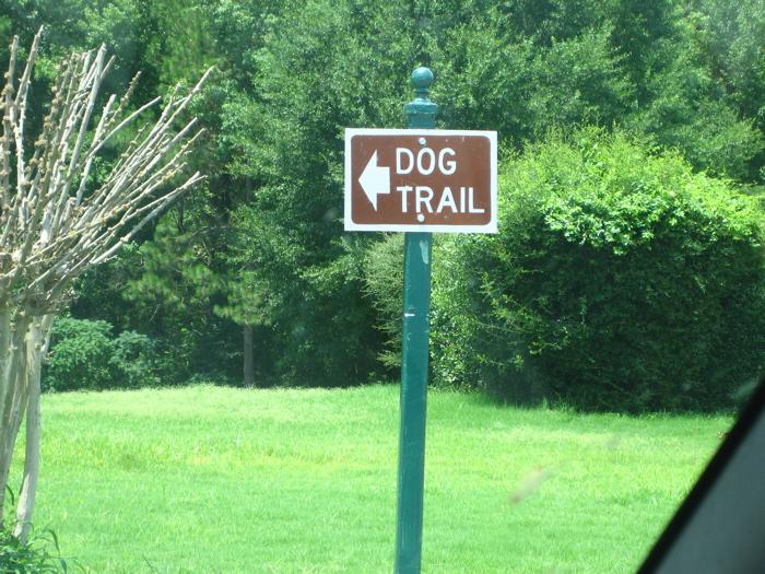 休憩所のドッグ・トレイル